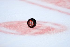 <p>CHL-Puck.<br/>Foto: City-Press<br/></p>