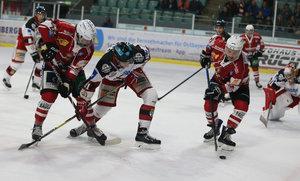 Gelingt einer der jüngsten Mannschaften der Oberliga der Aufstieg in die DEL2 oder setzt sich in den Playoffs die Routine durch?