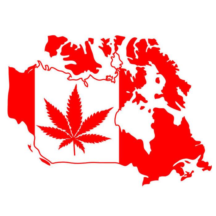 Kanada legalisiert Cannabis: Die möglichen Auswirkungen auf die NHL