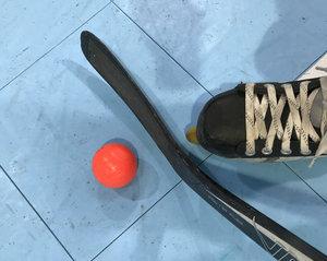 Saisonstart im Skaterhockey: Jagd auf Meister Kaarst eröffnet, fast alle wollen in die Playoffs