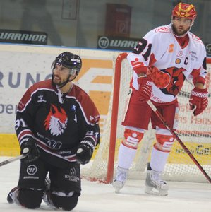 Saale Bulls Halle müssen krankheitsbedingt auf Neuzugang Raphaël Joly verzichten
