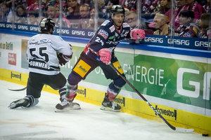 Punktgleiche Ice Tigers und Eisbären duellieren sich in Nürnberg, Spitzenreiter München gastiert in Wolfsburg