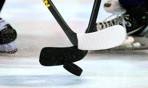 Deutsche Eishockey Liga verhängt Geldstrafen gegen die Straubing Tigers
