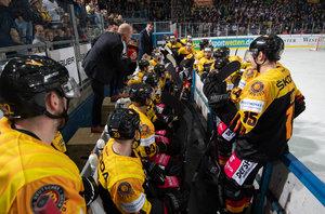 DEB-Team geht mit Rückenwind ins Duell mit den Nachbarn – Söderholm kündigt NHL-Verstärkung und Trainerteam für Ende der Woche an