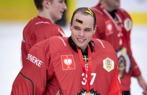 """Mannheims neuer Goalie Johan Gustafsson: """"Kann hier auf höchstem Niveau Eishockey spielen"""""""