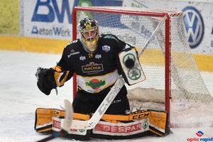Drei Nationen, eine Liga: Die Erfahrungen aus der Alps Hockey League als mögliches Vorbild für den Inter-Regio-Cup
