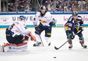 Top-Spiele im Doppelpack: Spitzenreiter München empfängt den Vierten Berlin, Straubing erwartet Meister Mannheim zum Verfolgerduell