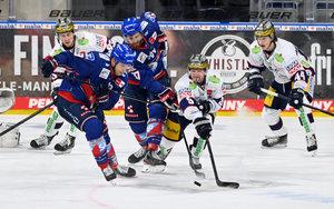 Mehrere Corona-Fälle bei den Eisbären Berlin sorgen für Spielabsage –Duell gegen Adler Mannheim wird am 8. Dezember nachgeholt