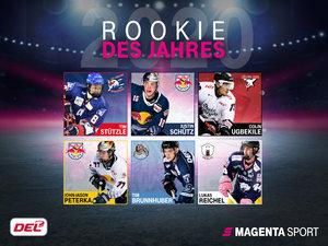 Die Wahl zum Rookie des Jahres in der DEL: Ab sofort abstimmen!