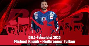 Falke Michael Knaub ist DEL2-Fanspieler 2020 – Kassels Derek Dinger und Bad Nauheims Simon Gnyp auf den Plätzen zwei und drei