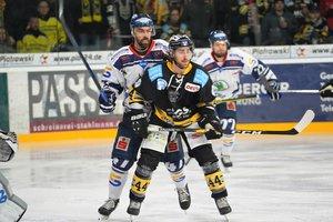 Bayreuth Tigers halten ehemaligen DEL-Verteidiger Kurt Davis mit Zwei-Jahres-Vertrag in Oberfranken