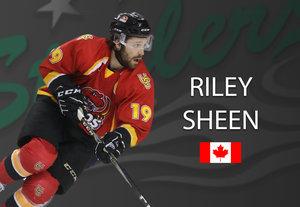 Aus Peking nach Bietigheim: Kanadier Riley Sheen besetzt die zweite Kontingentstelle bei den Steelers