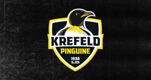 """Krefeld Pinguine präsentieren neues Logo – """"Erhaben dreinblickender Pinguin veranschaulicht den fokussierten Blick in die Zukunft"""""""