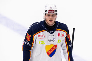 Nach dem Ende der Leihe zu Djurgarden: Dominik Bokk geht in die AHL und will sich dort für Carolinas NHL-Kader empfehlen