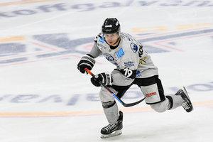 Dauerbrenner Ivan Kolozvary hängt eine weitere Saison bei den Bayreuth Tigers dran