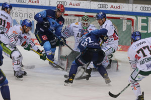 Zwei bayerische Derbys: EHC Red Bull München empfängt die Nürnberg Ice Tigers, ERC Ingolstadt gastiert in Augsburg