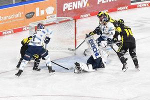 0:5 statt 5:6: Duell zwischen Krefeld und Ingolstadt gewertet – Pinguine setzen Spieler ein, der nicht auf dem Spielbericht stand