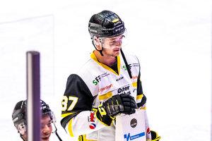 Prominenter Vater: Fischtown Pinguins Bremerhaven holen Center Markus Vikingstad von den Stavanger Oilers