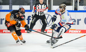 Kassel Huskies holen Dieter Orendorz, Tölzer Löwen vereinen mit Ian Brady früheres Traum-Duo